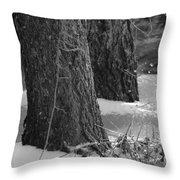 Frozen Black And White Throw Pillow