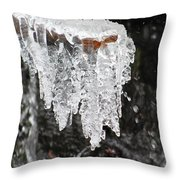 Frozen Branch Throw Pillow