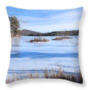 Frozen Bryant Pond Throw Pillow