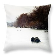 Frozen Columbia Throw Pillow
