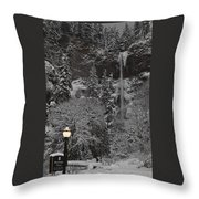 Frozen Dusk Throw Pillow