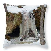 Frozen Fall Throw Pillow