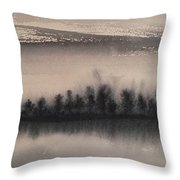Frozen Fields  Throw Pillow