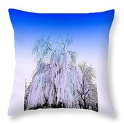 Frozen Fog Throw Pillow