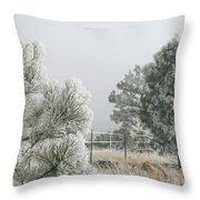 Frozen Fog On Pine Trees Throw Pillow