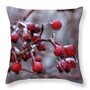 Frozen Fruit Throw Pillow