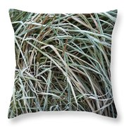 Frozen Grass - Ground Frost Throw Pillow