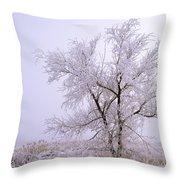 Frozen Ground Throw Pillow
