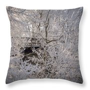 Frozen In Ice Throw Pillow