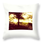 Frozen In Time Throw Pillow