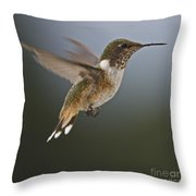 Frozen In Time.. Throw Pillow