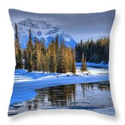 Frozen Jasper Paradise Throw Pillow