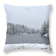 Frozen Lake 1 Throw Pillow