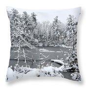 Frozen Lake 3 Throw Pillow