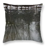 Frozen Lake Reflection Throw Pillow