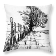 Frozen Landscape Canada Throw Pillow