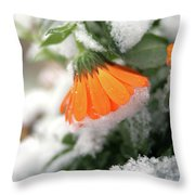 Frozen Marigolg Throw Pillow