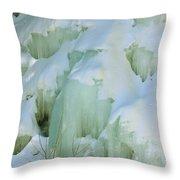 Frozen Moss Glen Falls Throw Pillow