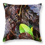 Frozen Oak Leaves, Glenveagh National Throw Pillow