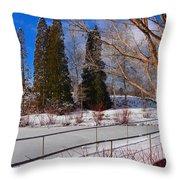 Frozen Pond / Chicago Botanic Garden Throw Pillow