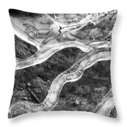 Frozen Puddle Two  Throw Pillow