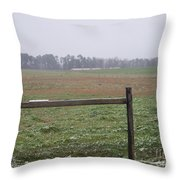 Frozen Rainy Field Throw Pillow by Kevin Croitz