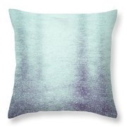 Frozen Reflections Throw Pillow by Wim Lanclus