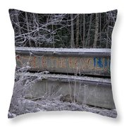 Frozen Revolution Throw Pillow