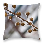 Frozen Seed Capsules In Time Throw Pillow