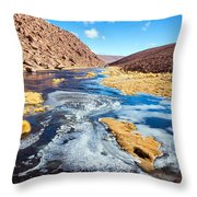 Frozen Stream In Chile Throw Pillow