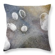 Frozen Symbiosis Throw Pillow