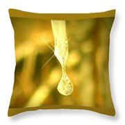 Frozen Tear Throw Pillow