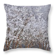 Frozen Trees During Winter Storm Throw Pillow