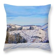 Frozen Valley 2 V3 Throw Pillow