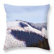 Frozen Valley 5 V2 Throw Pillow