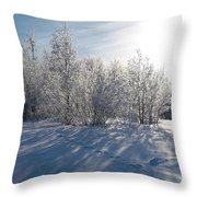 Frozen Views 3 Throw Pillow