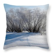 Frozen Views 4 Throw Pillow