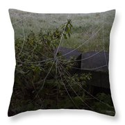 Frozen Web With Light To Dark Background Throw Pillow