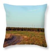 Fruit Farm Throw Pillow