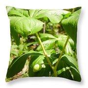 Fruit Of The Mayapple Throw Pillow
