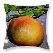 Fruit On The Tree Throw Pillow