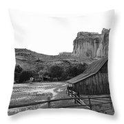 Fruita Farm In Black And White Throw Pillow
