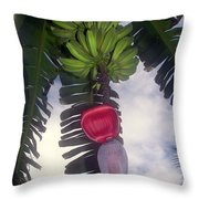 Fruitful Beauty Throw Pillow