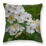 Fruity Potential  Throw Pillow