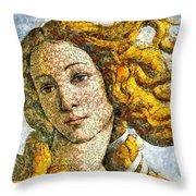 Fruity Venus I Am So Sorry Mr Boticelli Throw Pillow