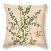 Frutex Spinosus Throw Pillow
