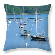 Ft Cleary,ct Throw Pillow