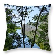 Ft Zachary Taylor  Throw Pillow