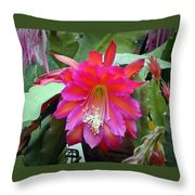 Fuchia Cactus Flower Throw Pillow