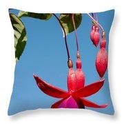 Fuchsia At Pilgrim Place In Claremont-california Throw Pillow